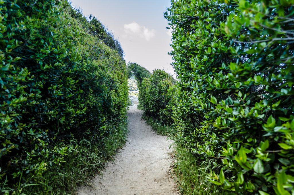 Chemin du Cap Taillat