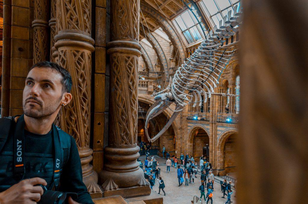 Londres musée histoire naturel